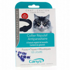 CANYS COLLIER CHAT CHATON