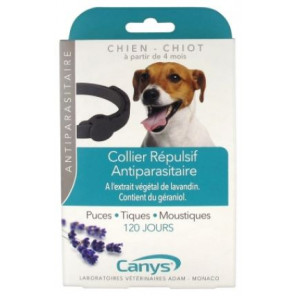 CANYS COLLIER CHIEN CHIOT