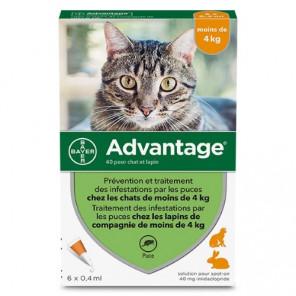 ADVANTAGE-40 CHAT/LAPIN PIPET 6
